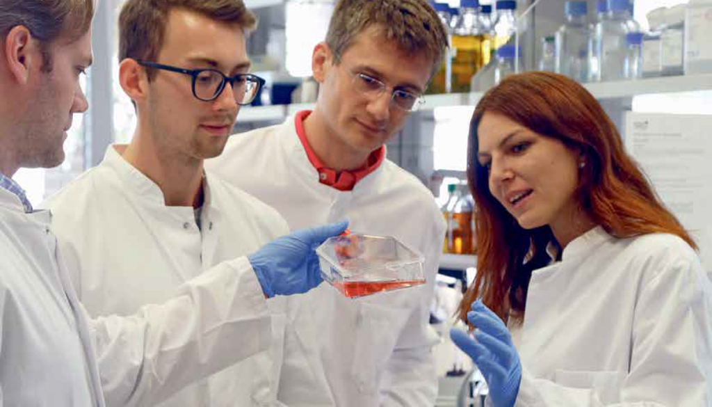 Artikel_Genomeditierung_Forschung_Frankfurt-1